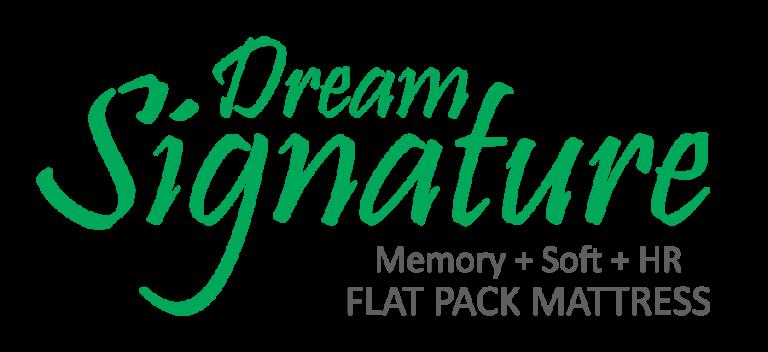 Dream Signature Logo